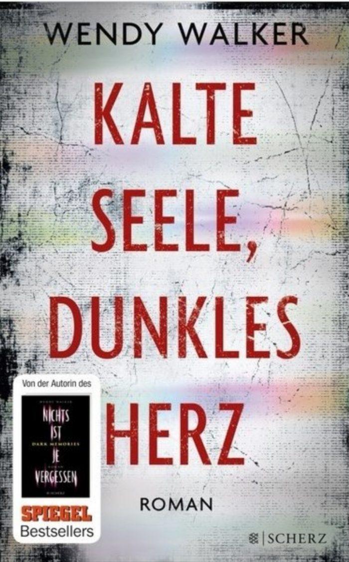 Silbernes Cover. Nur mit Titel Kalte Seele, dunkles Herz.
